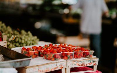 Jak zostać wege i z czym zmagają się roślinożercy? Akcja Viva-Zostań wege na 30 dni